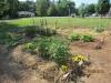 community-garden-5-26-2013-7