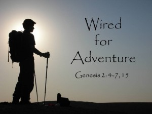 Wired for Adventure2